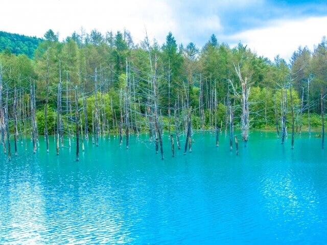 北海道イメージ